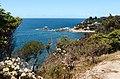 Yullumgo Cove Eden - panoramio.jpg