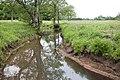 Zicht op het Amerdiep, onderdeel van het Nationale Landschap Drentsche Aa - Amen - 20429678 - RCE.jpg