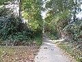 Zottegem Oude Trambaan Houtkanten op talud (5) - 277453 - onroerenderfgoed.jpg