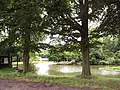 'Lakeside' pool. - geograph.org.uk - 23725.jpg