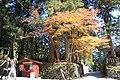 (栃木県) 日光東照宮にて。紅葉のシーズンになりました。来週あたりからは金精峠も雪で通れなくなりそうでした。 - panoramio.jpg