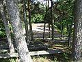 Švenčionių sen., Lithuania - panoramio (27).jpg