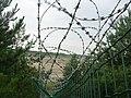 Žiletkový plot.jpg