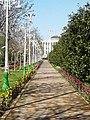 Аллеи парка им. А. Рудаки. г. Душанбе (1).jpg