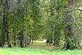 Аллея парка (восстановлена).jpg