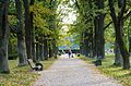 Ботанический сад, Минск - panoramio - sandexx (10).jpg