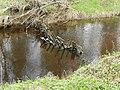 Закол, установленный на реке.jpg