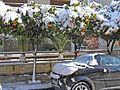 Зима в Афинах - panoramio (6).jpg