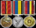 Медалі Капиці Артема.png