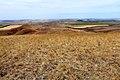 На Козьих горах. Вид в северном направлении - panoramio.jpg