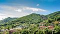 Панорама на селото Приковци.jpg