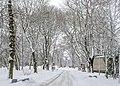 Парк взимку.jpg