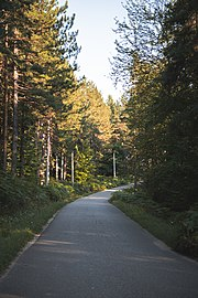 Парк природе Преслица 20.jpg