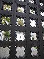 Храм Покрова Пресвятой Богородицы (Марфо-Мариинская обитель) фрагмент орнамента ворот.JPG