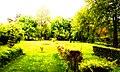 سبز - panoramio.jpg