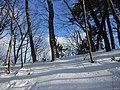 三本松緑地 Sanbon-matsu Park - panoramio (1).jpg