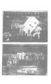 中國紅十字會歷史照片104.png