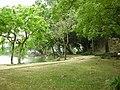 中興湖 Chung Hsing Lake - panoramio.jpg