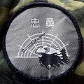 中華民國空軍忠勇部隊臂章 20160806.jpg