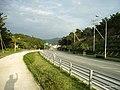 国道58号線 - panoramio.jpg