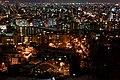 旭山記念公園から南円山方面を撮影 - panoramio.jpg
