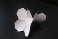 正七邊形鑲嵌紙模型.png