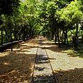 羅東林業文化園區 Luodong Forestry Culture Park - panoramio.jpg
