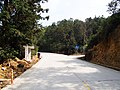 青石村路口 - Road Fork to Qingshi Village - 2015.02 - panoramio.jpg