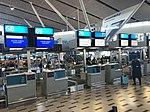 케이프타운 국제공항 체크인 카운터 01.jpg