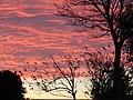 -2014-11-14 Sunrise, Trimingham, Norfolk (1).JPG