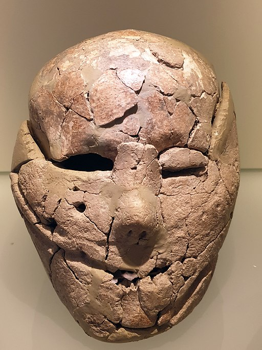 Plastered Human Skulls from the Pre-Pottery Neolithic Age