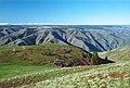 03-11-19, puffer butte - panoramio.jpg