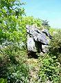 058 Landes du Cragou.JPG