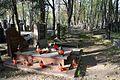 1458viki Cmentarz żydowski przy ul. Lotniczej. Foto Barbara Maliszewska.jpg