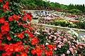 150523 Hyogo Prefectural Harima Central Park03s3.jpg