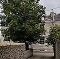 154 Hutcheon Street, Aberdeen.jpg