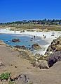 17 Mile Drive at Pebble Beach.jpg