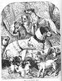 1853-dogs 01.jpg