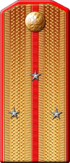 Rank insignia of the Imperial Russian Army until 1917, here Senior lieutenant.