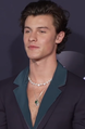 191125 Shawn Mendes at the 2019 American Music Awards.png