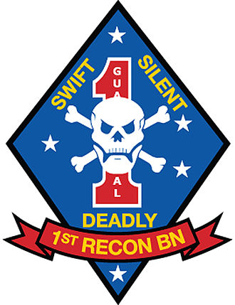 United States Marine Corps Reconnaissance Battalions - Image: 1st Recon Bn Color