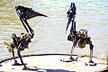 2. Biomechanical Pelicans (Section A) (8282753030).jpg