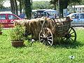 2006 0814Caruta Romania20060267.JPG