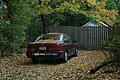 2008-11-02 Leaves fell on a Honda Accord EX.jpg