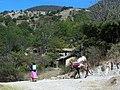 2009 Camino fiesta patronal.jpg