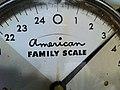 2010-365-331 Measuring the America Family (5213873354).jpg