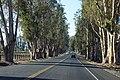 2013, Lakeville Highway - panoramio.jpg