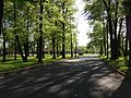 2013-05-12 17 10 37 View up the front drive of Gilmore J. Fisher Middle School.jpg