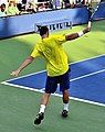 2013 US Open (Tennis) - Qualifying Round - Albano Olivetti (9801204936).jpg