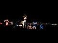 2013 Waunakee Rotary Holiday Lights - panoramio (1).jpg